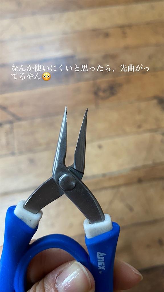 f:id:kiyokumakiyokuma:20210216002214j:image