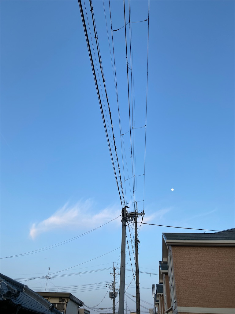 f:id:kiyokumakiyokuma:20210326223644j:image