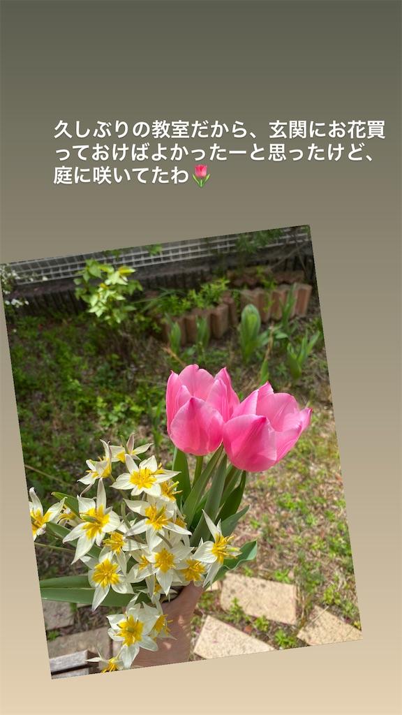 f:id:kiyokumakiyokuma:20210330185446j:image