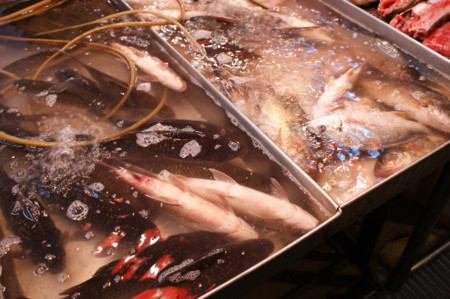 f:id:kiyomiya:20091230183650j:image