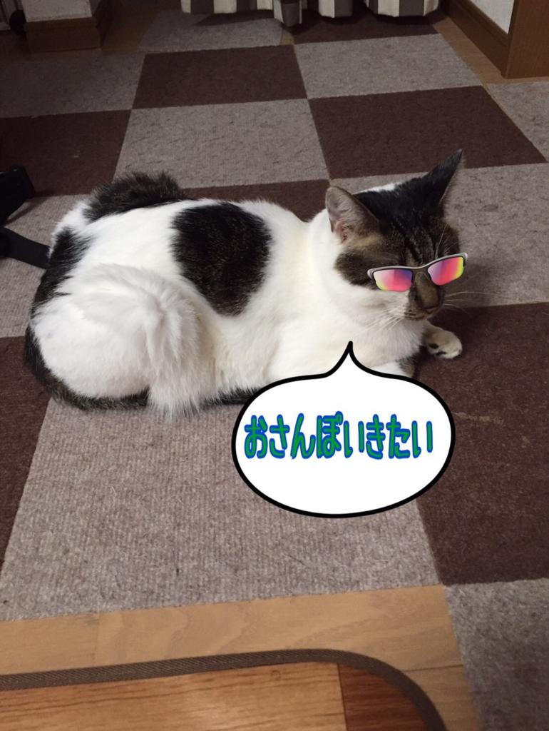 f:id:kiyomizu22233:20160807104052j:plain