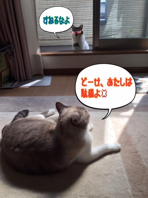 f:id:kiyomizu22233:20161002104257j:plain