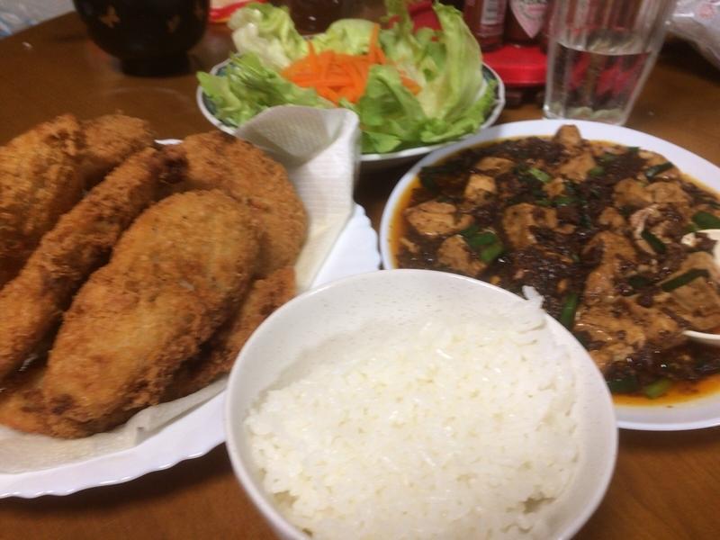 マーボー豆腐晩色々ご飯2019/2