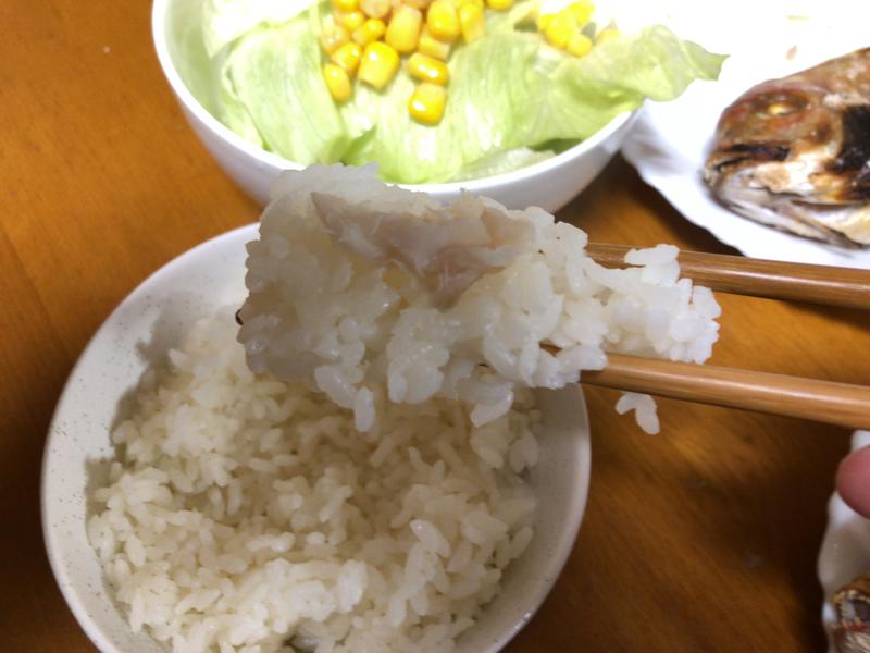 連子鯛塩焼きご飯2020/01/23