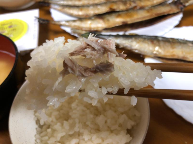 さんま箸2020/04/23