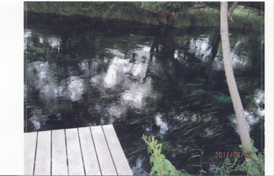 f:id:kiyosenomori02:20110629114412j:image:w290