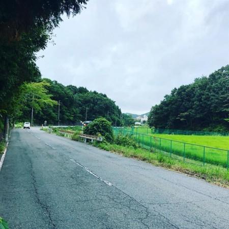 f:id:kiyoshi-n:20180816054942j:image