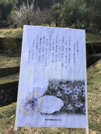 f:id:kiyoshi-n:20200223132841j:plain