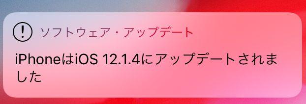 f:id:kiyoshi_net:20190216070918j:plain