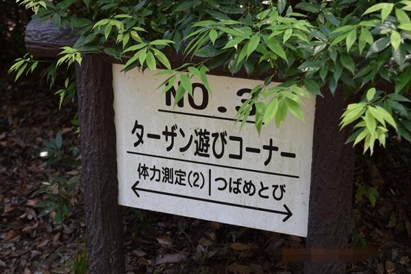 f:id:kiyosirou2013:20170617172415j:plain