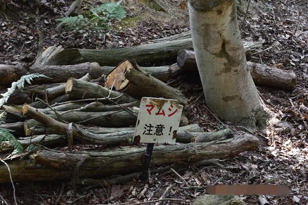 f:id:kiyosirou2013:20170617172720j:plain