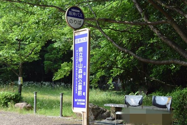 f:id:kiyosirou2013:20170617214627j:plain