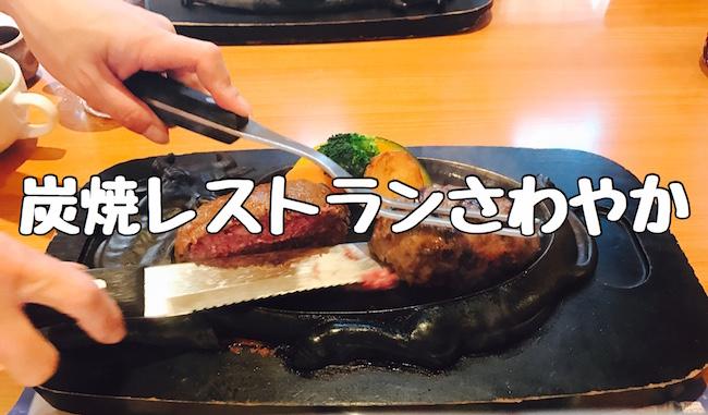 f:id:kiyosui:20161202105713j:plain