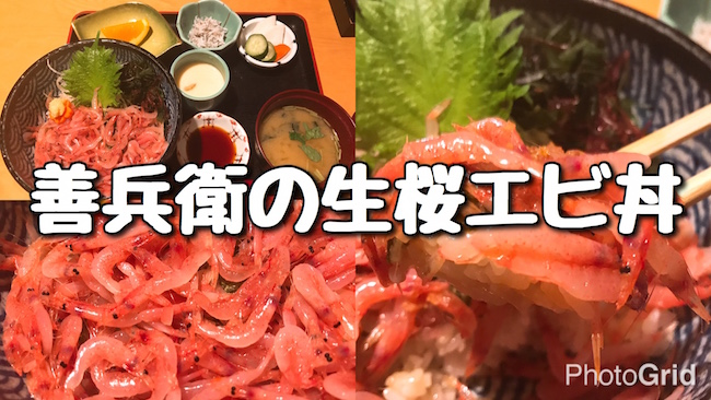 f:id:kiyosui:20161205111257j:plain