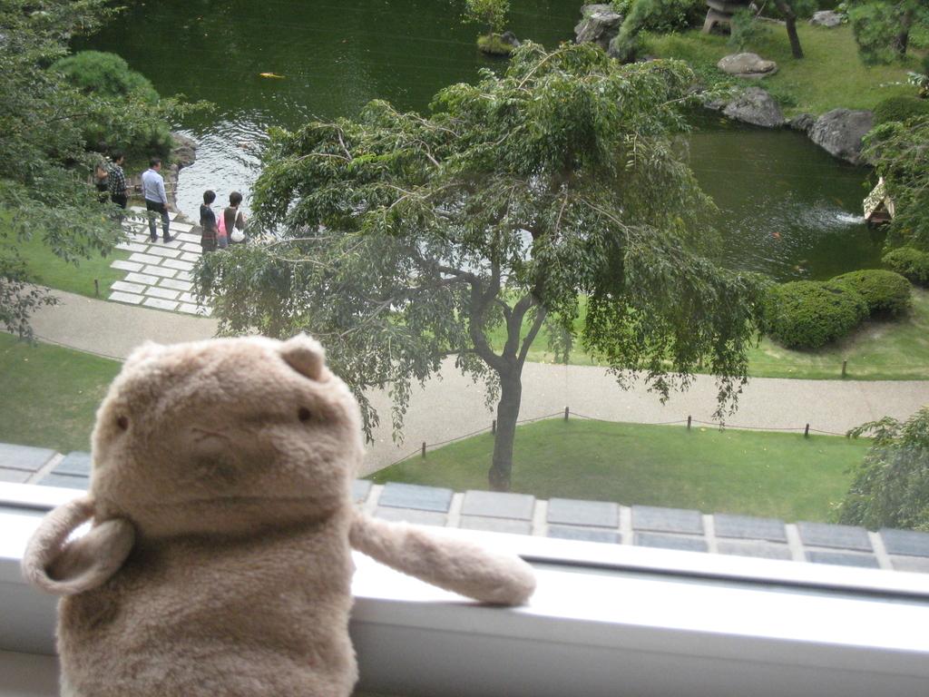 シェラトンホテルからの眺め