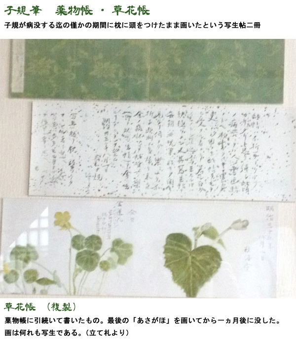 f:id:kizuna52ato:20170122123150j:plain