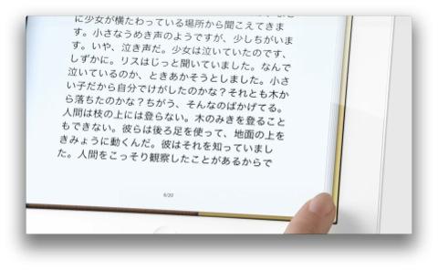 cap_20120324_122600.jpg