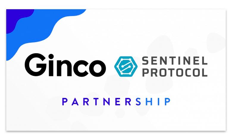 Sentinel Protocolとパートナーシップ連携。