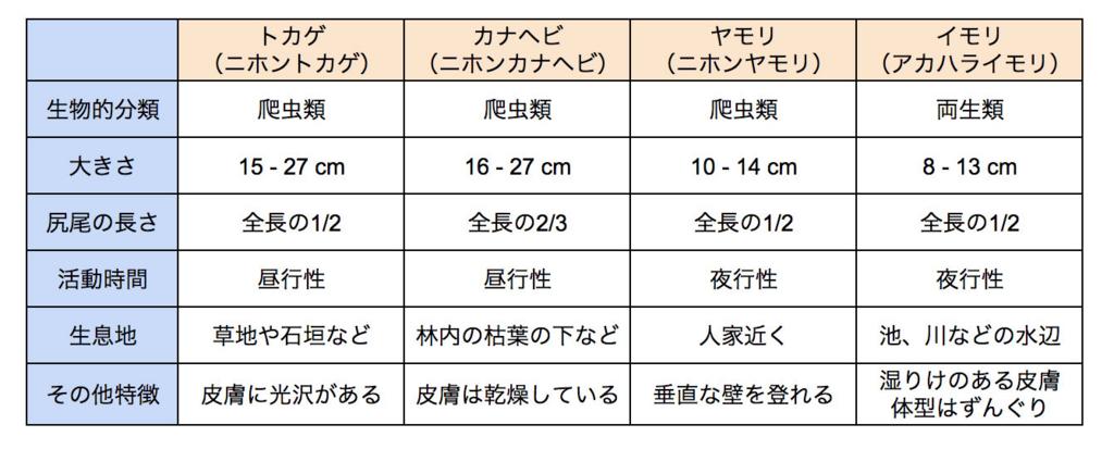 トカゲ類 比較表