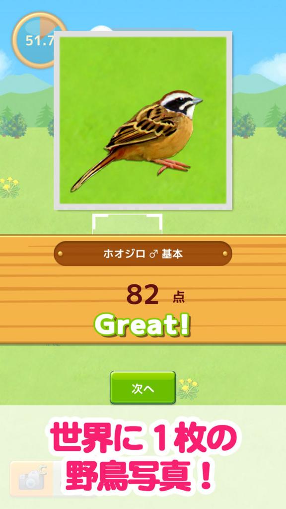 鳥マスター!