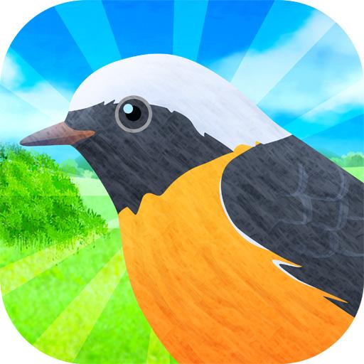 鳥コンボ!
