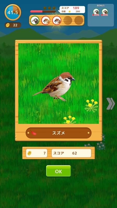 鳥コンボ! 鳥探し1