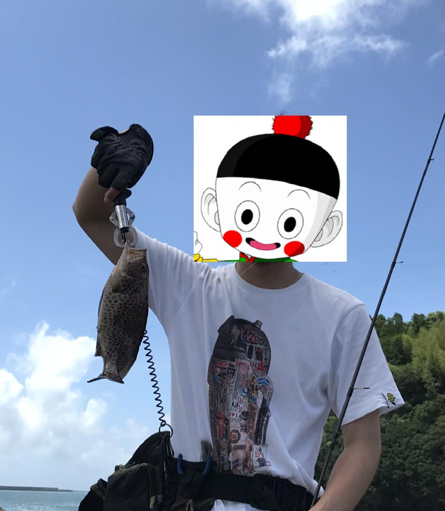 f:id:kkenji0:20181229230657p:plain