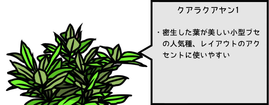f:id:kklmwashibel:20170226234902j:plain