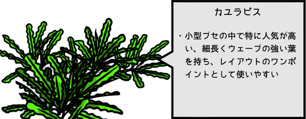 f:id:kklmwashibel:20170226234910j:plain