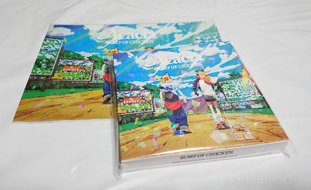 CDとクリアファイルの写真