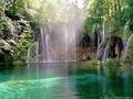 [森][池][せせらぎ]森 池 緑
