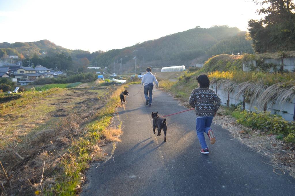 f:id:kmashi_oharu10:20161210194046j:plain