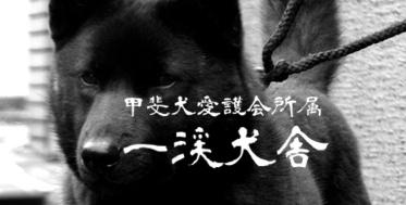 f:id:kmashi_oharu10:20170711224149j:plain