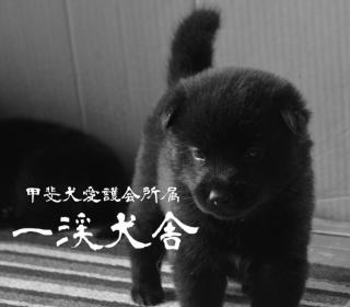 f:id:kmashi_oharu10:20170909122530p:plain