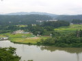 信濃川の河成段丘