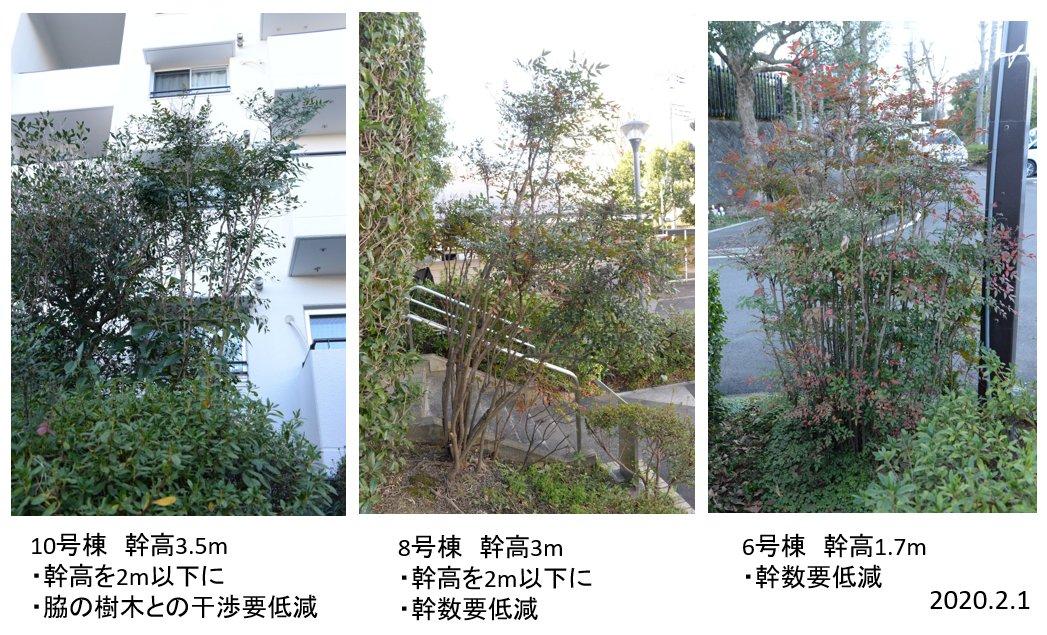 f:id:kn-shikajii:20200207213240j:plain