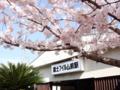 [桜]春めき桜 富士フィルム前