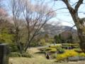 箱根彫刻の森美術館 星の庭