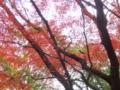 鎌倉 瑞泉寺