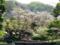 鶴岡八幡宮心字池
