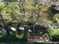 [鎌倉]鶴岡八幡宮心字池