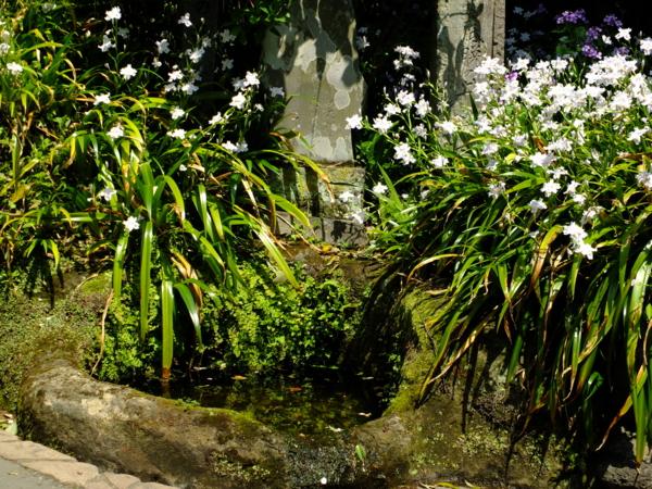 海蔵寺 底脱の井