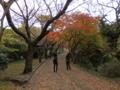 [鎌倉]源氏山公園