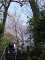 [鎌倉]妙本寺