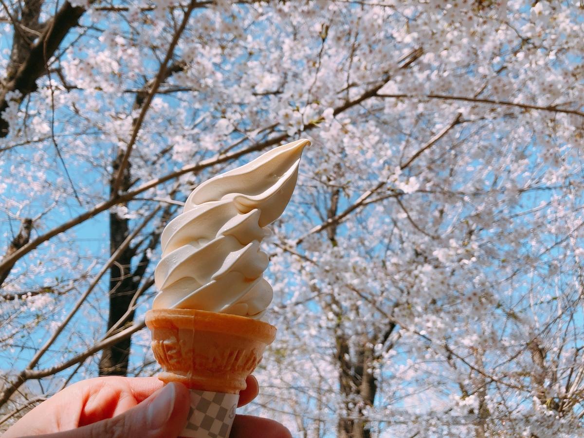 こどもの国「ソフトクリーム」