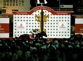 (競馬)NadAlSheba Racecourse, Dubai, U.A.E.