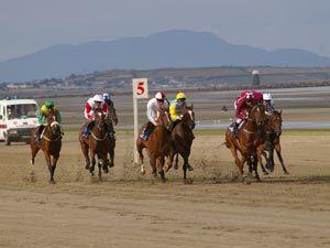 (競馬)Laytown racecourse, Ireland