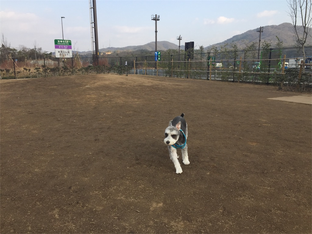 f:id:ko-kakuno:20190113205811j:image