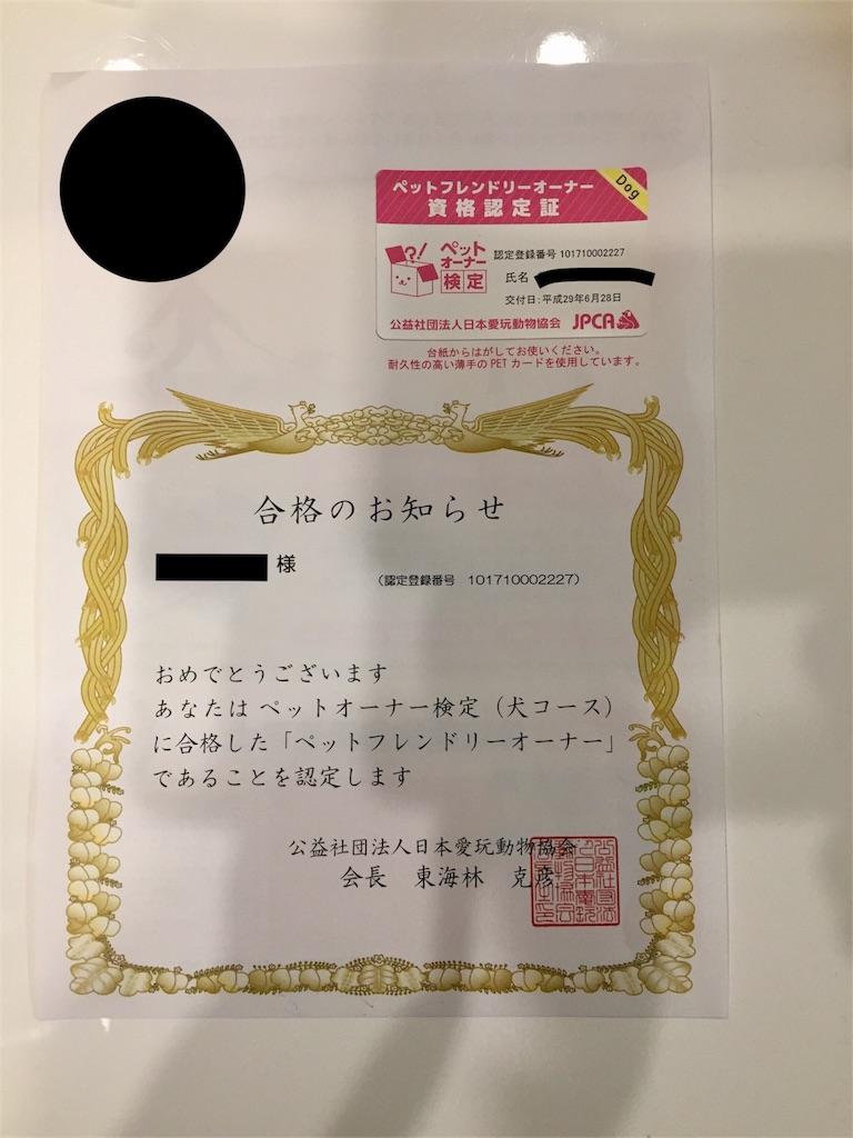 f:id:ko-kakuno:20190114005250j:image