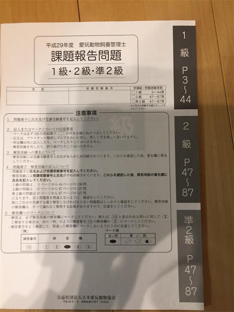 f:id:ko-kakuno:20190317200538j:image